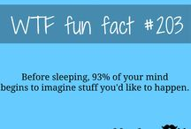 WTF!  fin fact