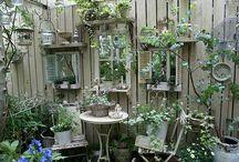 Gardening Ideas for my momma