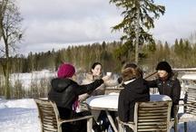 Estonia - Winter Wonderland!
