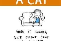 katten&liefde