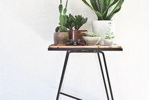 Grønne planter og blomster inspo