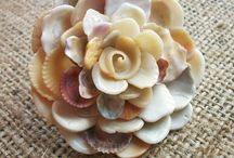 things to do with seashells