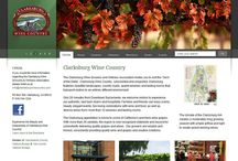 Websites Developed / Website's Developed by the Sacramento Website Design company E. Curtis Desgins.