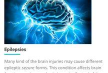 Brain Cord Nerve