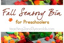 Sensory Bins / Tactile awareness and exploration through touch!