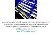 Marine Life Enclosures