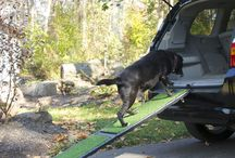Pet Ramps & Steps / Indoor and outdoor ramps from Gen7Pets to help keep your pets mobile.