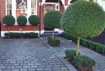 Glengorm Front Garden