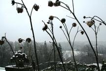 Winter at Gravetye Manor