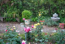 Gravel gardens and roses