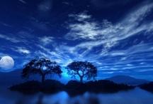 Moonlight and night scenes / by Sharyn Lorefice