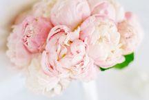Bay Tree wedding flowers