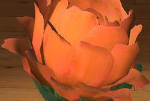Piwonia / Piwonia jest jednym z najpopularniejszych i najpiękniejszych kwiatów spotykanym w Polskich ogrodach. Rośnie w kępach o wysokości ok. 80-90cm. Jego kwiaty są duże o średnicy ok. 20cm. Mają wiele kolorów – różowe, czerwone, białe i inne.