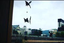 夏前半の思い出。 flying elephants #snapshot写真