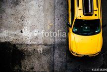Pantone: Primrose Yellow