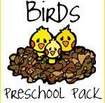 Birds for Preschool