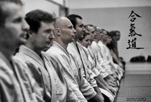 Martial Arts (Aikido, Muay Thai, Karate, BJJ, etc.)