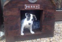 Dog House / Wood