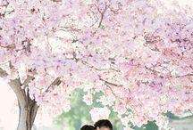 Spring Wedding / Seasonal Inspiration Wedding Ideas