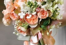Wedding Ideas / by Phyliss Reese