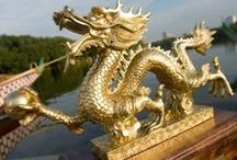 Major League Dragon Boat / Series of 9 dragon boat events across North America