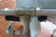 cadeirade rodas pAra cães