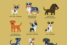 Dogs of World