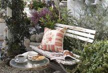 ogród / inspiracje do ogrodu