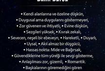 Burcum