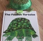 Foolish turtle