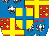 Almanach de Saxe Gotha - Princely House of Leiningen / The title of Prince of Leiningen was created by the Holy Roman Emperor Joseph II, who elevated Carl Friedrich Wilhelm, Count of Leiningen-Dagsburg-Hartenburg to the rank of Prince of the Holy Roman Empire (Reichsfürst) on 3 July 1779. The family is extant, and all male-line descendants of the grantee bear the title of Prince(ss) of Leiningen (Prinz(essin) zu Leiningen) with the style of Serene Highness. http://www.almanachdegotha.org/id81.html