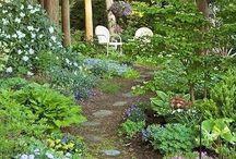 Jardin boisé