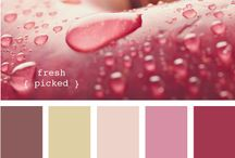 kolory palety