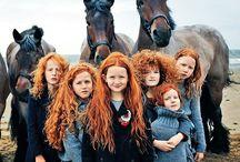 Фотосет с лошадью