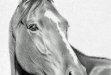 HORSES - ART