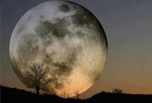 BELLA LUNA / TRANSLATION: Beautiful Moon, Italian / by Mendy Rene`e