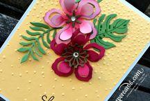 Cards - Botanical Gardens