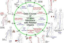 #energy#body#meridians#astral