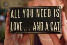 Things I Love