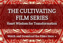 Be Here Now / Spiritual principles and practices to enliven the heart and being