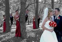 wedding / by Sarah Ross