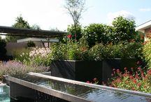 """Strakke, robuuste en stoere tuinen / Een strakke tuin waarbij gebruik is gemaakt van robuuste materialen om de tuin een stoer uiterlijk te geven. Compleet met vlonders, vijvers die """"overlopen"""", een overkapping en veel beplanting. De tuinmeubels zijn afgestemd op de uitstraling van de tuin en maakt het tot een geheel. Deze tuinen heeft alles in huis om heerlijk in te vertoeven. Voor de opdrachtgevers is dit hun droomtuin!"""