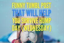 Funny Tumblr Post / Funny Tumblr Post