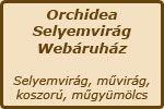 Webáruház logo / Webshop logo