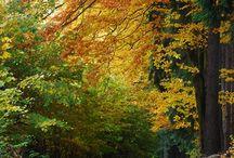 Wszystko, co kojarzy się z jesienią / Jesiennie...
