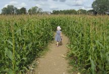 Places to go in Basingstoke with children