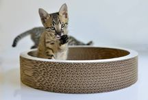 Griffoir corbeille pour chat en carton naturel
