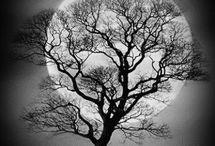 Ay dınlık