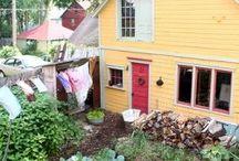 GARDEN: The Backyard Urban Farm