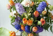 Dutch Flower Inspiration